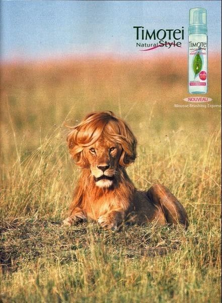 timotei naturelle style !!!